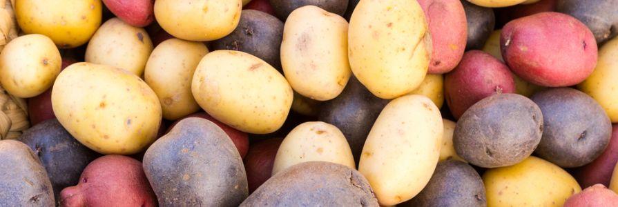 Image result for starchy vegetables